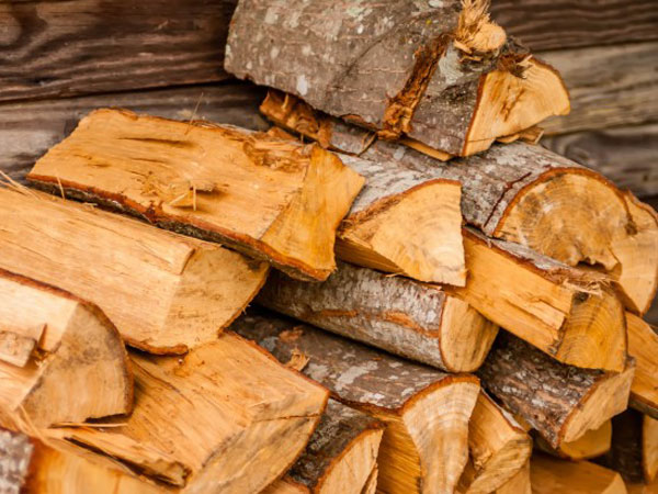The raw material- Wood